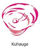 steinschlag-kuhauge-1